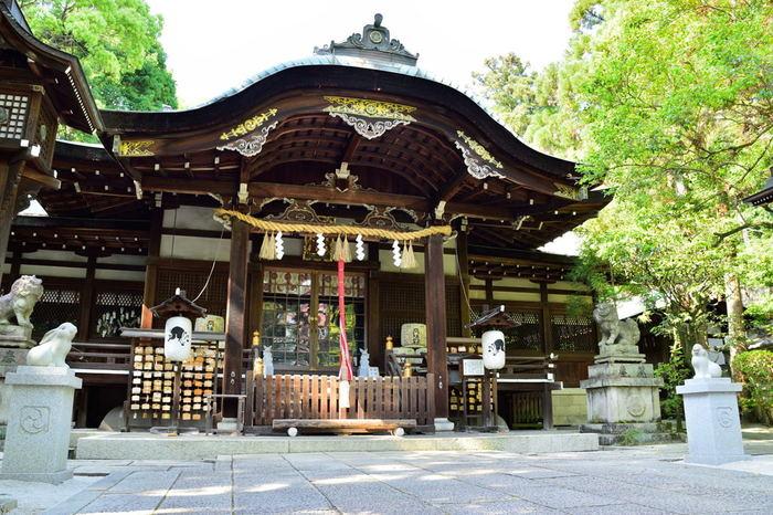 本殿前にある「狛うさぎ」、ご本殿にある右が「縁結びのうさぎ」左が「金運のうさぎ」、手水舎の「子授けうさぎ」など、うさぎがいっぱいる神社です。