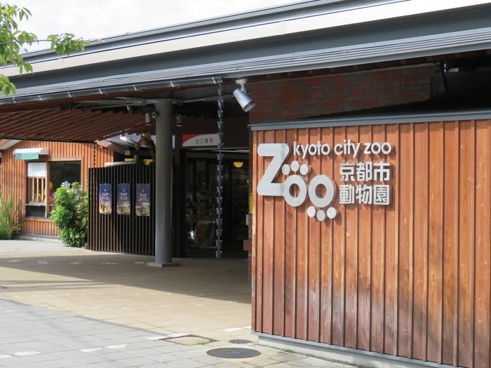 上野動物園に次いで日本で2番目に古い京都市動物園は、2015年秋にリニューアルが完成。生態を分かりやすく見せていて、天井にぶら下がるゴリラ、頭上を歩くヤギなど興味深いです。