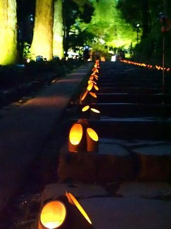 「瑞鳳殿」に向かう途中の参道百段や、本殿の周囲に竹灯篭が灯されとても幻想的な雰囲気に。