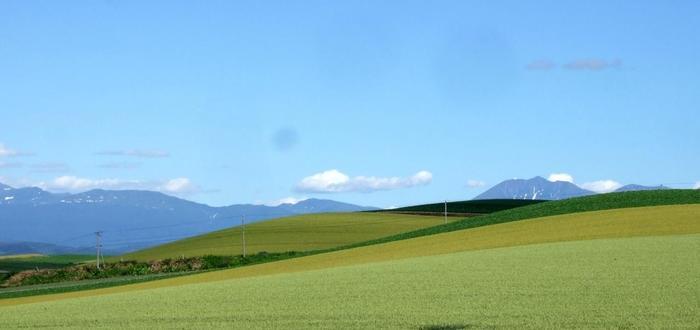 この景色をどんなアングルで写真に収めるか、楽しくなってしまいますよ♪ただ私有地には入らないように、マナーを守って楽しく丘巡りをしましょう。