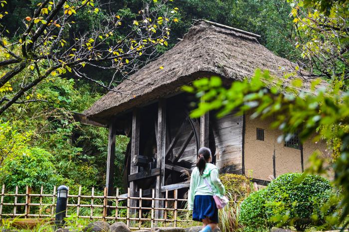 川崎市重要歴史記念物に指定されている、長野県長野市大字上ケ屋から移築されてきた水車小屋。米つきや粉ひき、蕎打ちなどに利用していたそう。周りの景色にうまくとけ込んでいて実に風情があります。