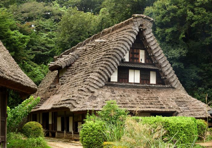 国指定重要文化財の江向家住宅は、合掌造りで有名な富山県の五箇山(ごかやま)地方から移築された農家です。東京から近い場所で合掌造りに触れることができるなんて、嬉しい発見です。