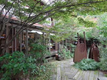 カフェから見える中庭の木々は、澄み渡った空気のせいか色鮮やかでのびのびとしています。