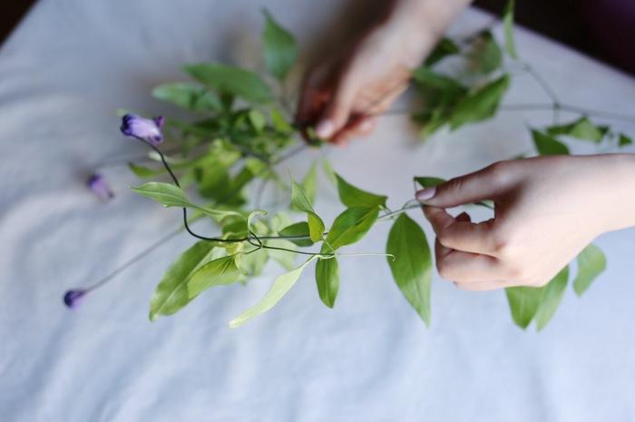 ①ツル性植物であるクレマチスは、周りのものに絡まりながら成長していく特徴があるので、複数のツル(茎)が絡まりあっている場合は、丁寧に一本一本解いてあげましょう。