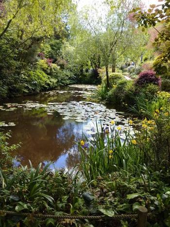 この美術館はクロード・モネの「睡蓮」を自然光で見ることができることで有名。さらに美術館の庭園にはモネの庭を模した睡蓮の池もあってまるでフランスのジヴェルニーにあるモネの庭みたい。