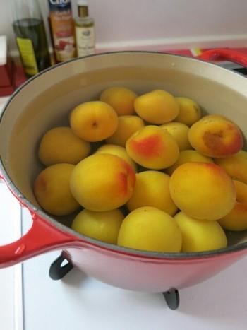 まずは梅をよく洗い、1時間ほど水にさらします。その後お鍋でコトコト中火で茹でていきます。梅が浮いてきたらザルに上げ、粗熱が取れたら実を潰して種を取ります。