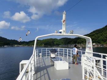 舟屋の光景を存分に味わうにはやはり海上から遊覧船で観光するのがおすすめです。