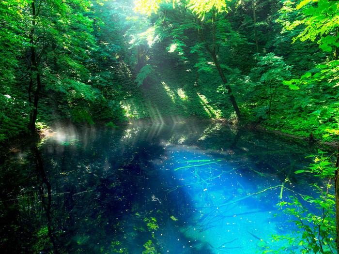水深9メートルの青池は、抜群の透明度です。鬱蒼と茂る深い緑の森に、陽射しを浴びて青く煌めく水面を持つ湖が佇む様は神秘的で、まるでこの場所が神の棲家であるかのような気分を覚えます。
