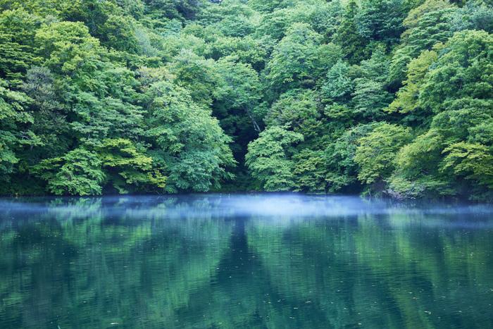 比較的規模が大きい落口の池は、水深20メートル、表面積27200平方メートルの池です。