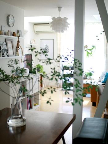 活き活きとした緑があれば風を感じる爽やかな空間に♪大ぶりの木の枝を透明感のあるガラスのフラワーベースに生けてみましょう。