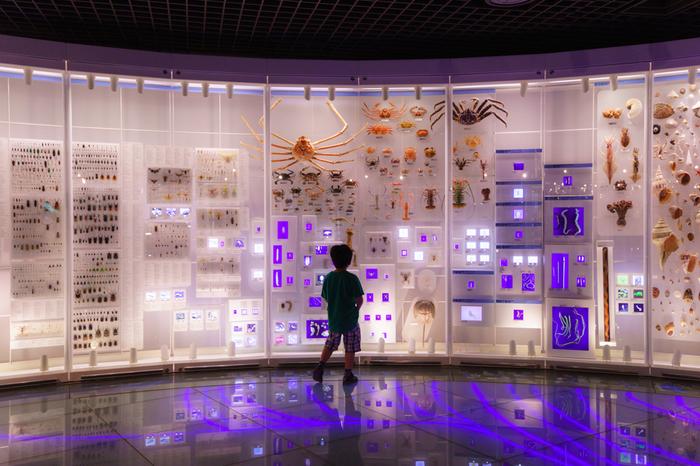 「国立科学博物館」