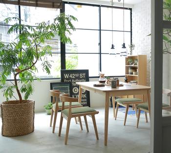大きな窓のある開放的なキッチン、素敵ですね!日光のたくさん当たる部屋は、観葉植物にとって最高の場所です。