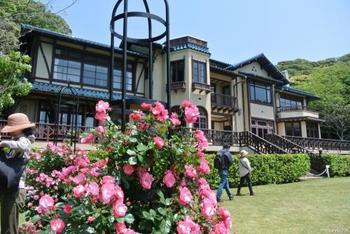 毎年バラが見ごろの5月から6月にかけて「バラまつり」が行われ、たくさんの人が訪れます。 情緒あふれるレトロな洋館をバックに、カラフルに咲き乱れるバラたちを堪能できる…。それが鎌倉文学館の魅力です。