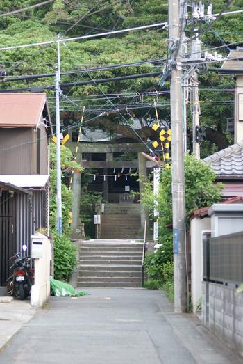 御霊神社 目の前を江ノ電が走る御霊神社には、江ノ島・鎌倉の七福神の福禄寿が祀られています。