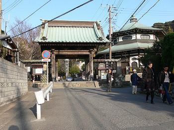 本覚寺 本覚寺は、鎌倉市小町にある日蓮宗の寺院です。鎌倉七福神のひとつであるえびす様が祀られています。本覚寺では、日蓮の分骨堂前できれいなあじさいを楽しむことができます。