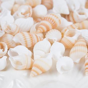 夏らしい爽やかなデザインのアロマワックスバーを作りたい時にはシェルが大活躍します。巻貝タイプや二枚貝タイプなど形もいろいろ。珊瑚やスターフィッシュも人気のパーツです。