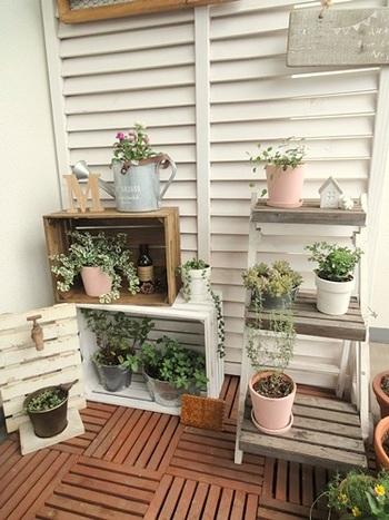 比較的育てやすい観葉植物は手軽にグリーンを増やすことができます。お花よりも水やりも楽チンなので、数があってもそれほど手間がかかりません。