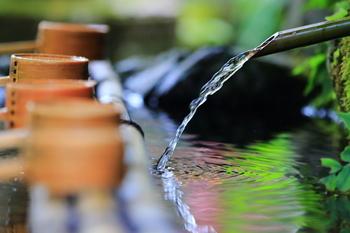 """「きふね」は、昔から「氣生根」と書かれてきました。 """"万物のエネルギーである《氣》が生じる根源の土地""""という意味なのだそう。 こんこんと尽きず湧き出るきよらかな水源を見ていると、納得してしまいますね。"""