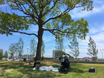 """芝生エリアも豊富なので、木陰にレジャーシートでプライベートスペースを確保してみても。 都会の物音はなくなり、""""ポーッ!""""という汽笛の音だけが聞こえてきますよ。"""