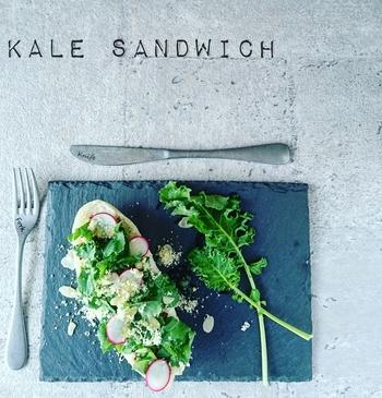 【グリーンオープンサンドのレシピ】 ドッグパンを横半分に切って、ケールなどのグリーン野菜をちぎってのせます。ラディッシュをアクセントに。黒のスレート皿などに盛れば、ふりかけた粉チーズやアーモンドも美しく映えます♪
