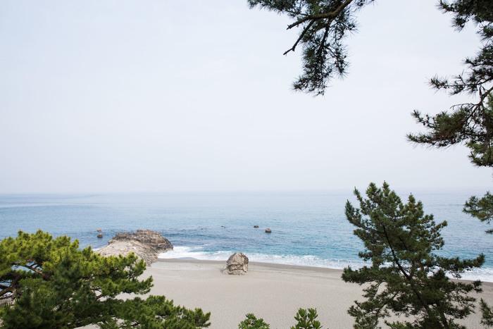 高知県は、パワフルな太陽と大きな海に懐の広さを感じる土地でした