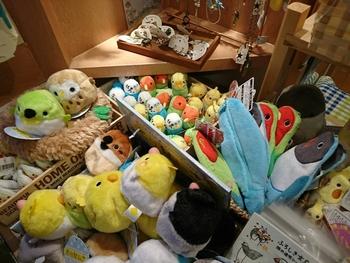 店内には小鳥モチーフのグッズを集めた雑貨コーナーもあるなので、鳥好きさんは是非行ってみてください。