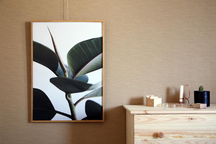 人気ブランド、Paper Collective(ペーパーコレクティブ)のポスター。植物の写真をポスターにしたこちらの「GREEN HOME」シリーズは、フィンランドのアーティストが手がけています。くっきりとした色合いなのに、不思議とインテリアに馴染むのでシンプルなお部屋にもおすすめです。