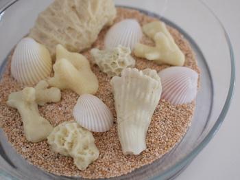 貝殻と砂を、うつわに入れただけのかんたんディスプレイ。