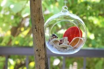 丸いガラスドームに、カラフルな貝殻とサンゴを詰めたもの。まるで小さな砂浜を閉じ込めたみたいですね。