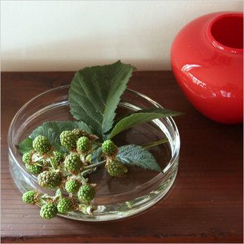 ハンドメイドのガラス製品が人気の【小泉硝子製作所】からは、シャーレーをご紹介します。本来は理化学用に使用される物ですが、薄く水を張って植物を挿せば素敵なインテリアに大変身☆小さな植物をさりげなく飾るのにぴったりです。