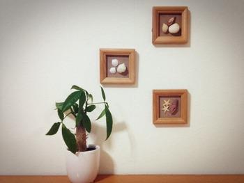 複数のフレームに貝殻を貼り付けて、壁に飾るのもオシャレですね。シンプルな貝殻もアイディア次第で、素敵なインテリアに変身します。