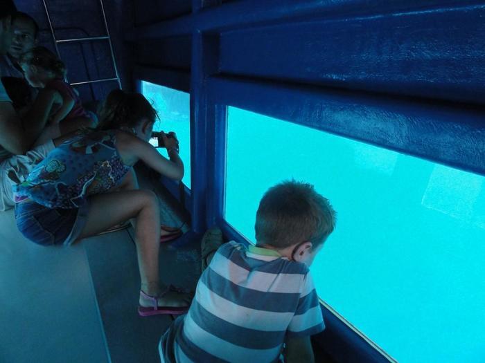 船の中から海を眺めることが出来ます。