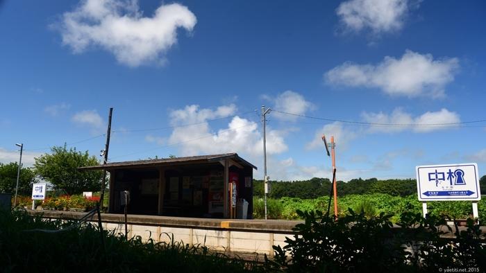 1931年に開業された中根駅は、茨城県勝田駅と阿字ヶ浦駅を結ぶひたちなか海浜鉄道湊線沿線の無人駅です。