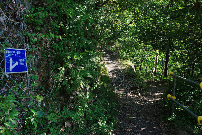 駅周辺に集落や民家は見当たりません。また、田本駅へと続く道は、登山道を思い起こさせる舗装されていない狭い路のみです。