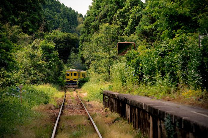 久我原駅ホームに一歩足を踏み入れると、まるで絵本の中に迷い込んだような錯覚を感じます。今にも草木で覆い尽くされそうな小さなホーム、駅を取り囲む深緑の森、2両程度の小さな列車が織りなす景色は、まさに絵本の挿絵そのものです。