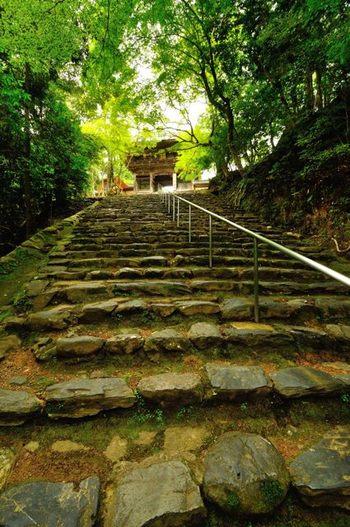 【神護寺・楼門前へと続く、350段の石段。】