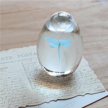 卵型のガラスの中に閉じ込められたクローバーがとっても涼し気。 そんなペーパーウエイトは、暑中見舞いが届いたときや書きかけの手紙を抑えておくのにピッタリ。  もちろん窓辺や寝室に飾って眺めるだけでも癒されます。
