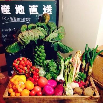 ゆっくり食事ができないことが多い現代の人たち。新鮮な野菜を食べることも難しい、そんな都会の暮らしにそっと寄り添ってくれているんです。