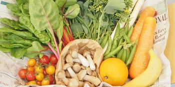 提携農家さんによる旬のおいしい野菜、普段はなかなか手に入らないちょっと珍しい野菜がセットで届く「宅配やさいBOX」というサービスも。何が届くのかはお楽しみ♪