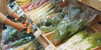 お店にいるスタッフさんの中には栄養士の資格を持った方が!どんな野菜がおいしいのか、さらにはその野菜にぴったりの調理法まで、質問しながら購入することができるんです。