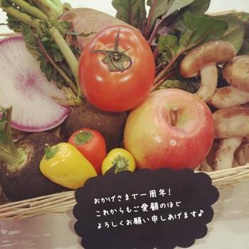 もっとおいしい野菜と出会える♪都会のおしゃれな八百屋さん5選