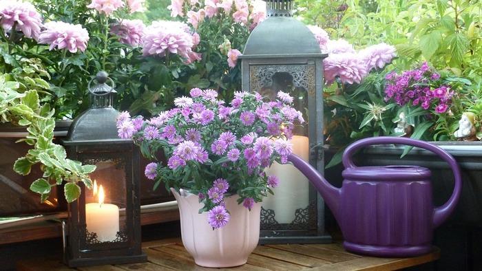 ■ガーデン×キャンドル お庭やテラスの鉢植えのそばにランタンおいて、華やかな雰囲気に。暗くなる夜はもっと素敵ですよ。花々の美しさを引き立てるアイテムにもなります。