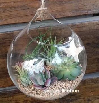 ハンギングのガラスポットにテラリウム風の寄せ植えを作っても素敵です。小さな世界が宙に浮かんでいる雰囲気は、ナチュラルなインテリアのお部屋にしっくりとマッチしそう。