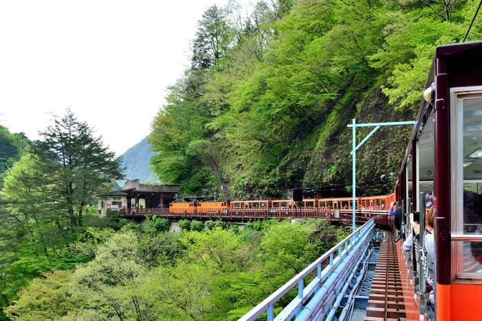 黒薙駅(くろなぎえき)は、1953年に開業された黒部峡谷鉄道本線沿線の駅です。絶景が広がる黒部川渓谷沿いに、ひっそりと佇む小さなホームは、周囲の美しい大自然と見事に融和しています。