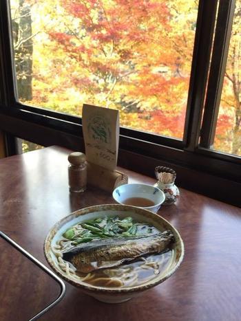 「山本食堂」は、JR山城高雄バス停近く。うどんや蕎麦、丼や定食がメインの食堂です。三尾界隈で手軽に食事をするなら、お勧めのお店です。  店内の座席からの眺めも良く、出汁がしっかり効いた丼や麺類は、美味しいと評判。観光地の食堂は、がっかりさせられることは多いものですが、ここは別格と人気です。