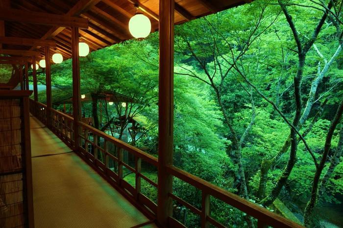 「高雄 錦水亭」は、周山街道沿いにある料理旅館。川床料理で良く知られ、夏はもちろん、晩秋の頃も清流と紅葉の景色を眺めながら、山菜や川魚といった地場の食材や京野菜を用いた京会席が味わえます。