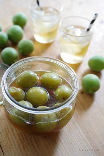 梅を冷凍してからシロップを作ると、はやく梅のシロップが抽出されるといわれています。アカシアやクローバーなどのクセのないはちみつを使うと美味しくできるそうです。