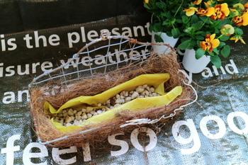 土だけで植え込むとバスケットが重くなってしまうので、鉢底用の軽石を強いてから苗と土を入れます。水はけも良くなるので、根を腐らせません。