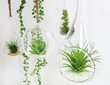 枝ものや鉢植えで植物を取り入れるだけではなく、植物を使った雑貨・インテリアをお部屋に加えるのもおすすめです。インテリアショップなどで購入することもできますが、自分で手作りするとより愛着が湧きますよ。意外と簡単に作れるので、ぜひ挑戦してみましょう!