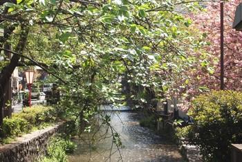いかがでしたか?観光地としても人気が高い京都に佇むビジュウ。繁華街や観光地へのアクセスにも便利な立地となっていますので、旅の滞在に是非利用してみてください。